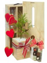 Picture of Hearts and Chocolate Tree Gift