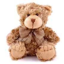 Picture of Brown Teddy Bear