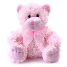 Picture of Pink Teddy Bear