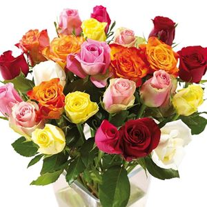 Picture of Mixed Rose Bouquet